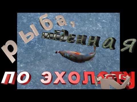 Безмотылка 2016 год 2 серия  Снято с подводной камерой Aqua Vu
