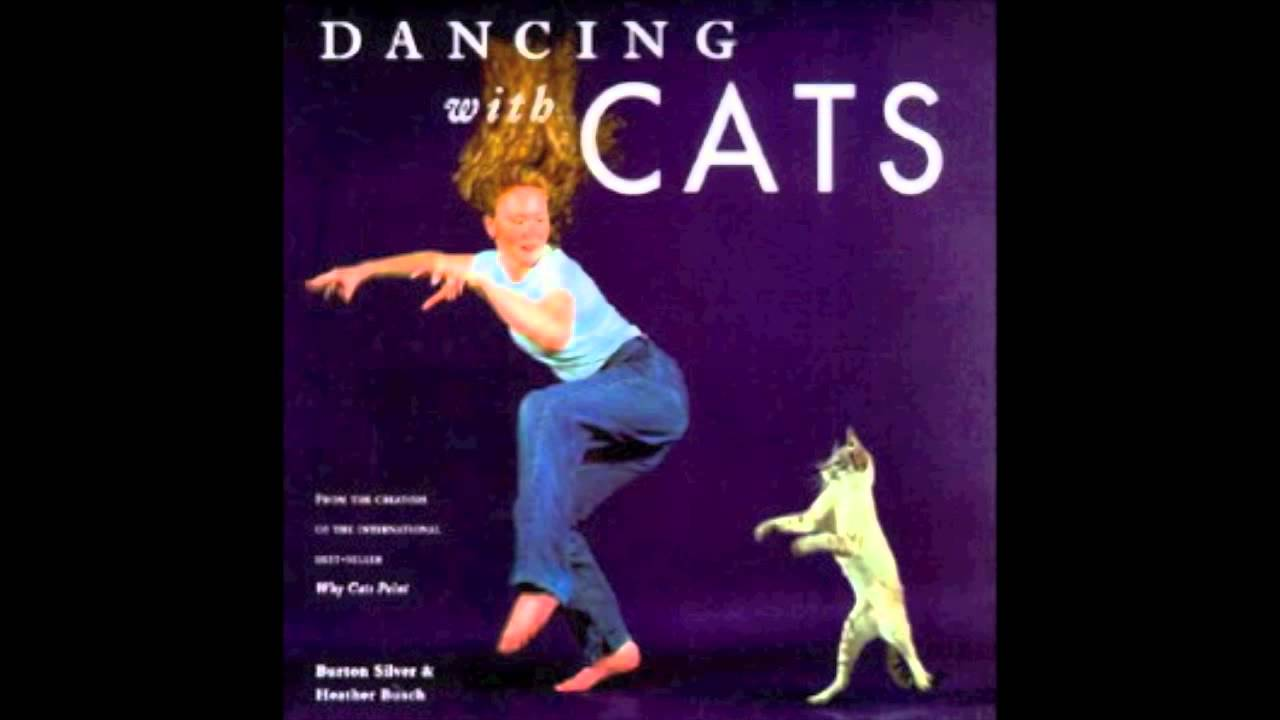 review of the book dancing in The los angeles review of books is a nonprofit, multimedia literary and cultural arts magazine that combines the great american tradition of the serious book review with the evolving technologies of the web.