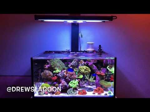Innovative marine nano reef tank Hydra 26 hd