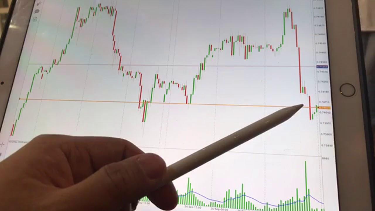 bw akcijų pasirinkimo sandoriai 5 geriausias cryptocurrency investuoti 2021 m
