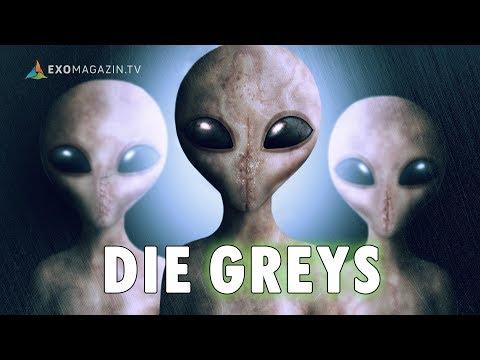 Die Greys - Entführt von Außerirdischen | ExoMagazin