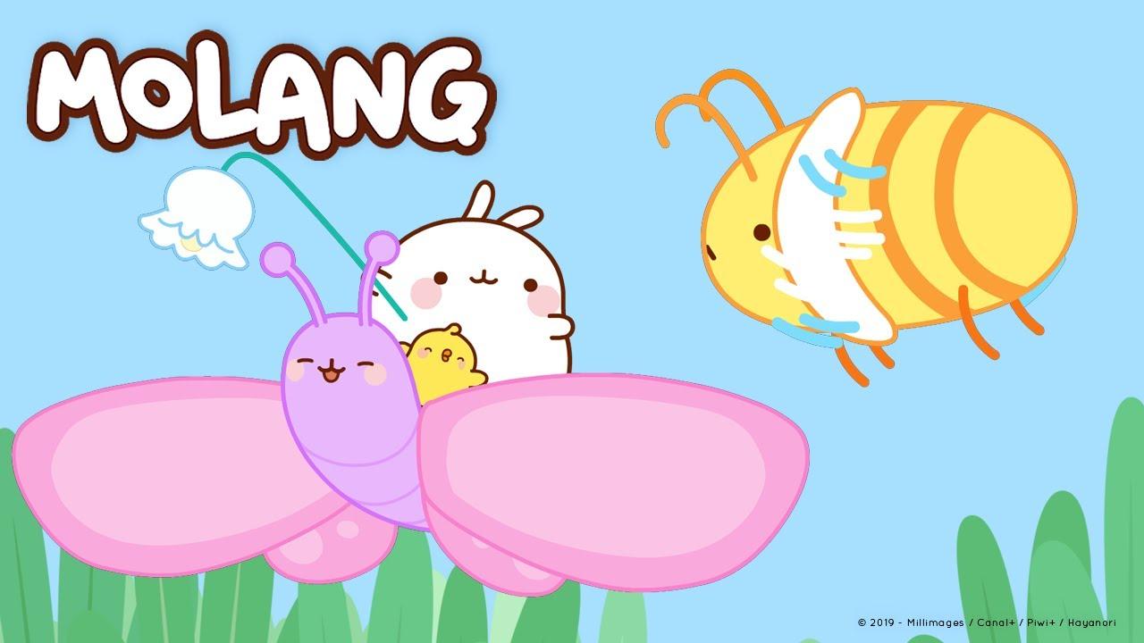 Molang - We shrank Molang !    More @Molang ⬇️ ⬇️ ⬇️