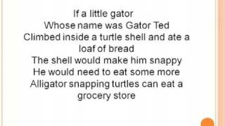 Turtle Song Lyrics