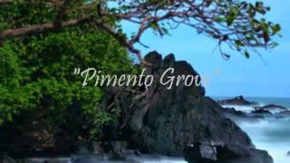Pimento Grove (Afterhours Ibiza) Dale Anderson & Anil Chawla