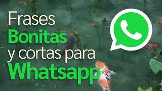 Frases Bonitas y cortas para Whatsapp (2021) (4k)