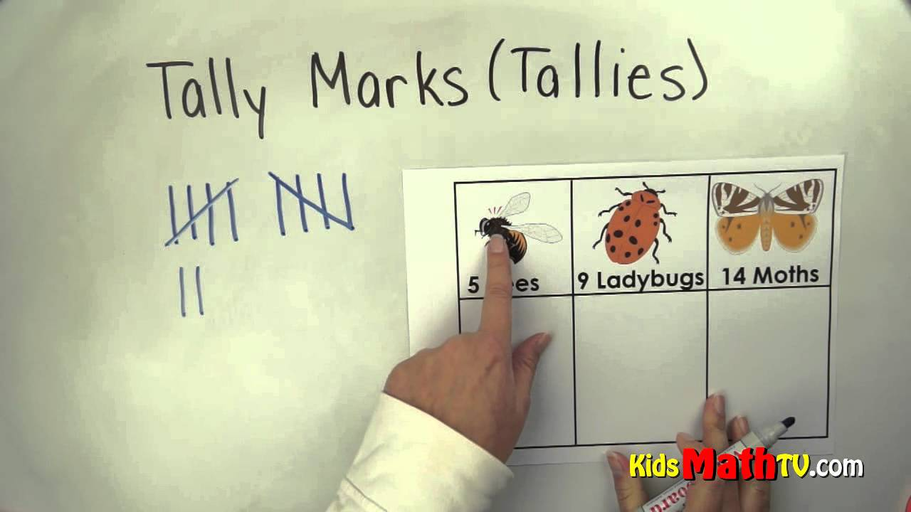 Counting with tally marks or tallies  Kinder  1st  2nd grades math     Counting with tally marks or tallies  Kinder  1st  2nd grades math video    YouTube
