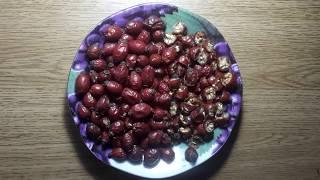 БЕСПЛАТНО Как отбить аппетит Сжесь жир Шиповник от целлюлита всех болезней Передаю ПРИВЕТ Тутси