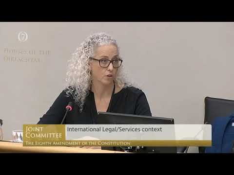 """""""A horrifying charity"""" - Dr Patricia Lohr before the Eighth Amendment Committee"""