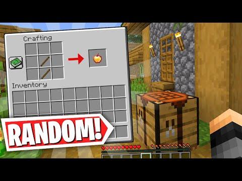 Minecraft but.. EVERY Item Drop is RANDOM!  (Minecraft Survival)