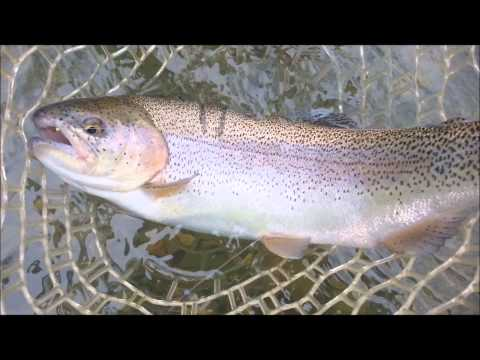 Spring Fly Fishing Kickoff 2015 - Jeff Wilkins Fly Fishing