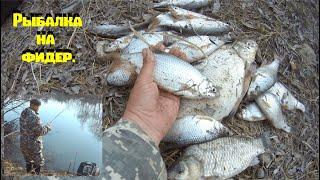 Рыбалка на фидер на Оби в Новосибирске Фидер рулит Feeder fishing