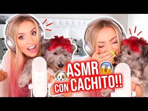 asmr-con-mi-perro!!!-🐶🎤😱-reacciÓn-brutal!😱- -katie-angel