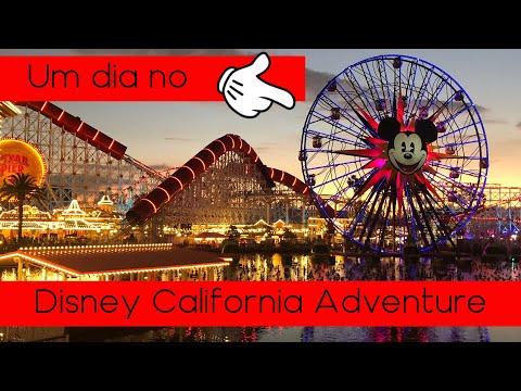 Vlog Califórnia #5 - Um dia no Disney California Adventure