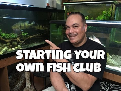 How To Make A Local Tropical Fish Club