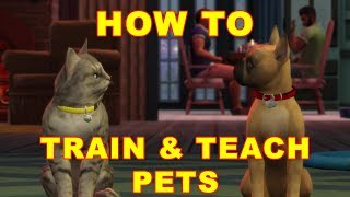Sims 4 Cats & Dogs: How to Train & Teach Your Pet