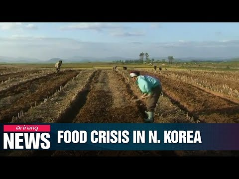 40% of N. Korean population suffers from food shortage: UN