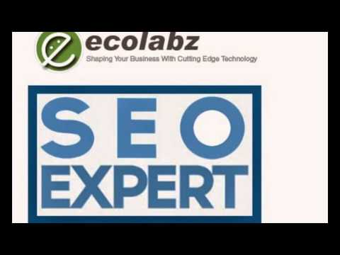 Web Design Services Florida Arizona Utah Nevada - Ecolabz