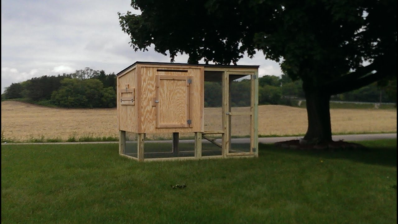 Ordinaire Chicken Coop For 4 Chickens!