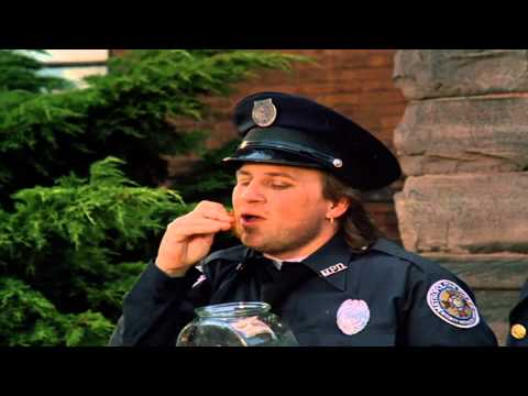 Police Academy 4: Citizens on ... is listed (or ranked) 9 on the list The Best Steve Guttenberg Movies
