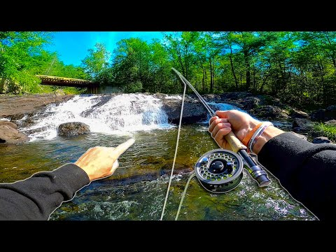 FLY FISHING Mountain Streams In BACKWOODS Of Maine
