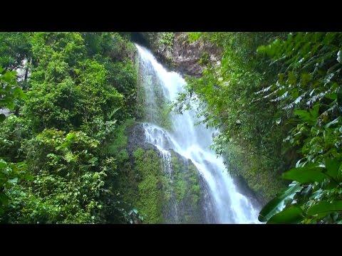 Northern Nicaragua - natural beauty: landscapes, fauna & flora