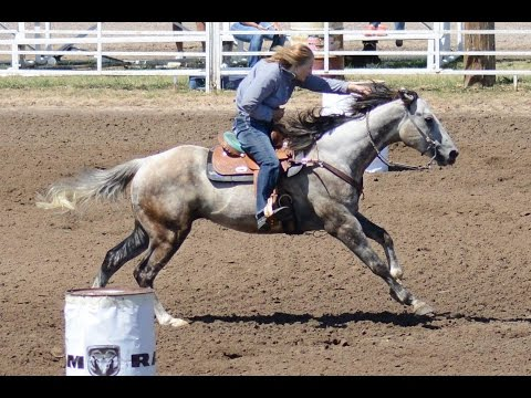 Cochran Cowgirl 1D/2D Barrel Horse For Sale GRAY (SMOOTH)