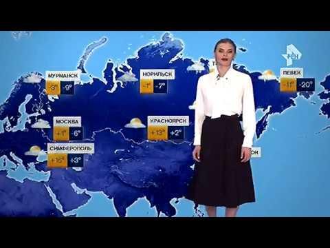 Погода байконура на 7 дней