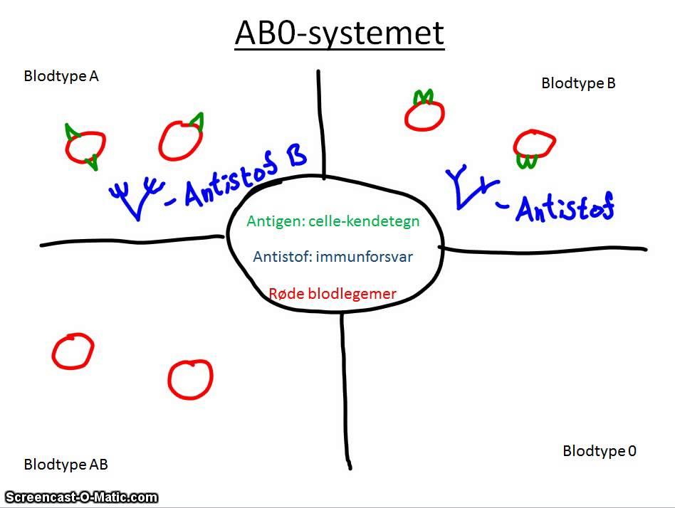 abo systemet