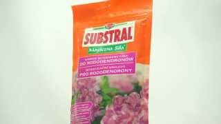 Substral Intervenční hnojivo pro rododendrony 350g