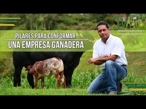 Pilares para Conformar una Empresa Ganadera - TvAgro por Juan Gonzalo Angel