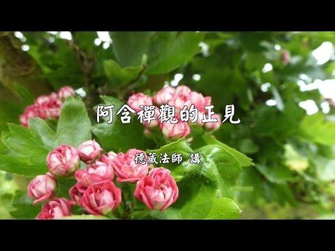 阿含禪觀的正見【德藏法師】