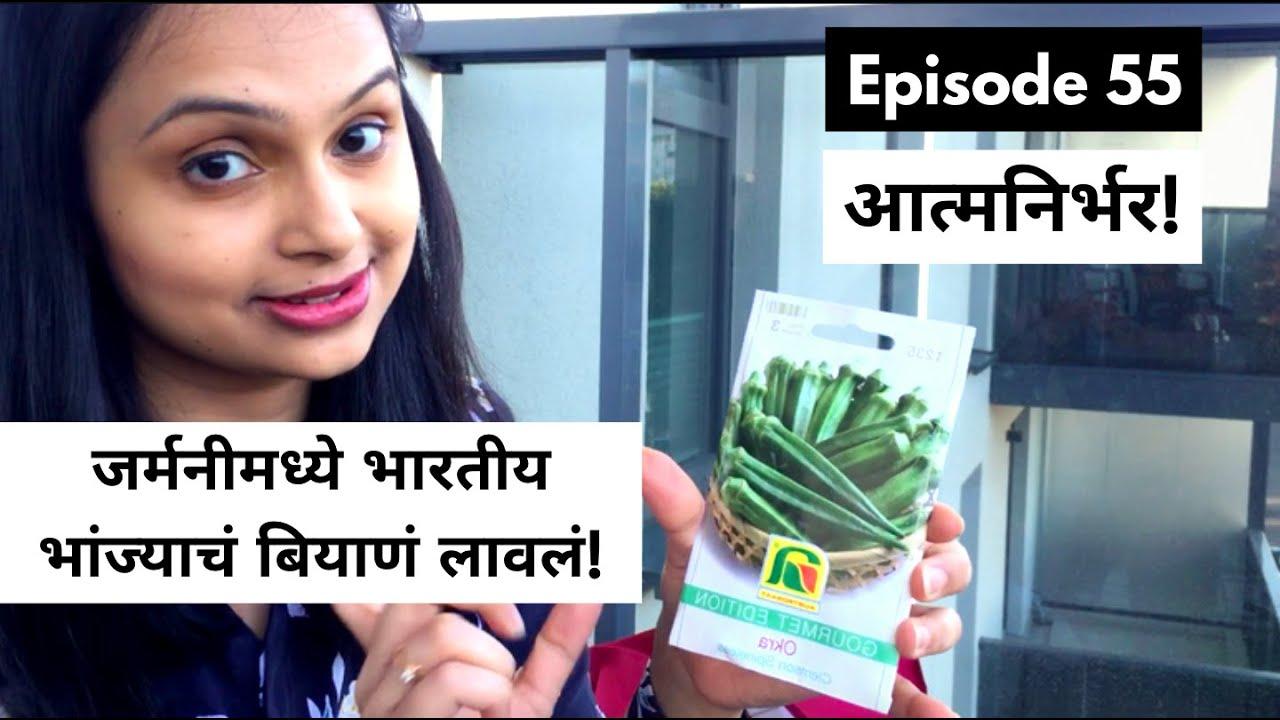 जर्मनीमध्ये भारतीय भांज्याचं बियाणं लावलं! I planted Indian vegetable seeds in Germany | आत्मनिर्भर