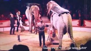 KUFAKABRA - Stop Cirkus (+Video)