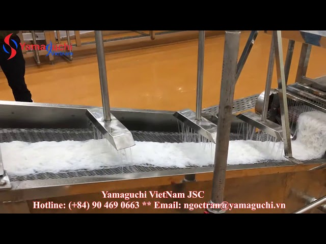 Automatic fresh rice vermicelli production line 500 kg/h