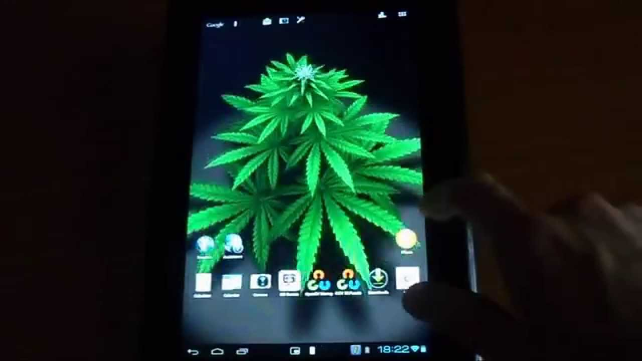 My Ganja Plant Live Wallpaper for Android - YouTube