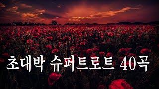 초대박 슈퍼트로트 40곡 - 주옥같은 트로트 모음[최고…