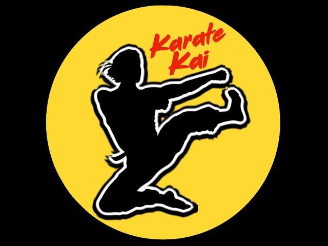 Karate Kai: Intro to Karate Level