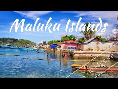 Maluku Islands in a Minute