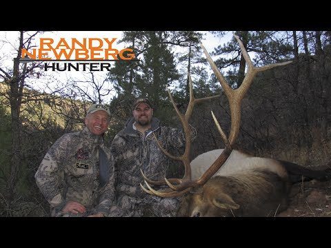Arizona Elk Hunting with Randy Newberg - Big Kaibab Bulls (FT S1 E8)