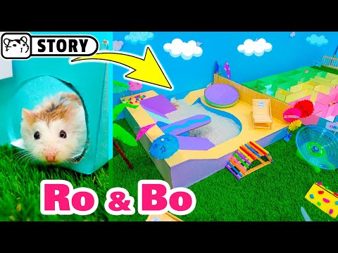 Roborovski Hamsters In A Water Park With A Small Maze And Sand Pool 🌴 Come And Enjoy - Homura Ham