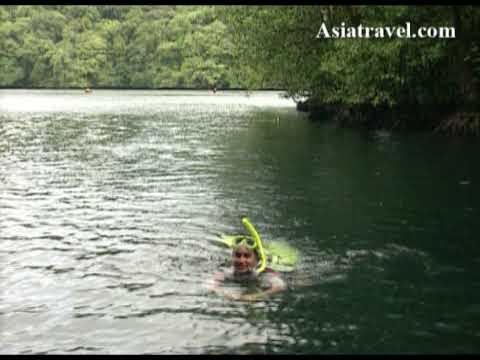 Jellyfish Lake, Palau Rock Island By Asiatravel.com