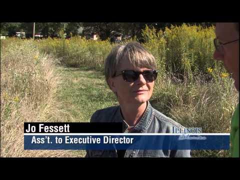 Illinois Stories | Illinois Audubon Invasive Species | WSEC-TV/PBS Springfield