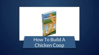 Pre Built Chicken Coops Must Watch This Before You Actually Purchase