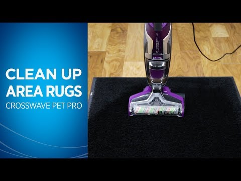 How to Clean Area Rugs with Your CrossWave® Pet Pro