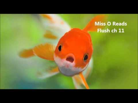 Miss O Reads Flush ch 11