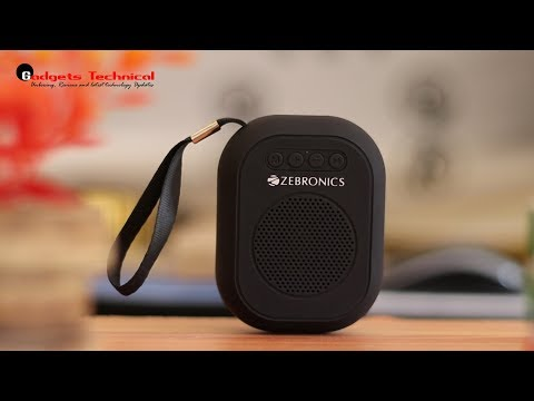 Zebronics ZEB-SAGA Ultra Portable Bluetooth Wireless Speaker With Built in FM/ Call Function (Black)