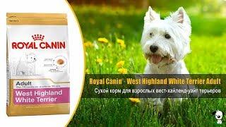 Корм для взрослых собак породы вест хайленд уайт терьер · Royal Canin West Highland White Terrier Ad