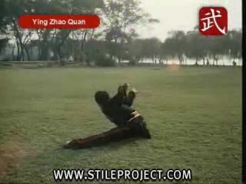 Kung Fu Eagle Style Kung Fu Eagle C...