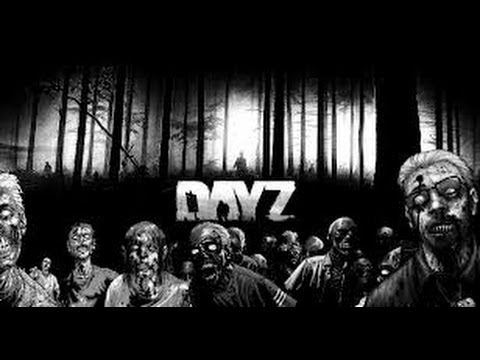 DayZ Meeting some Hackers