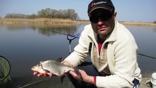 Фидер на реке Псел / Рыбалка апрель 2016(Камера отдельных эпизодов ..., 2016-04-20T08:30:44.000Z)